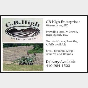 CBHigh-300