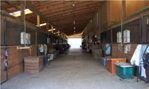 Main-Barn-Aisle