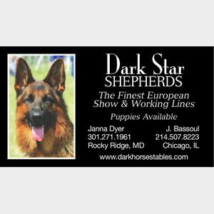 DarkStarShepherds-300